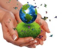 Hoy se celebra el Día Mundial del Medioambiente