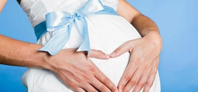 Taller embarazo, maternidad & crianza respetuosa