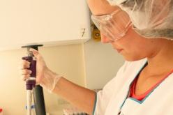 Células Madre Revolucionan los Tratamientos Estéticos