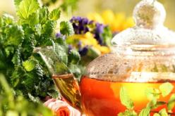 5 hierbas naturales que te harán perder peso