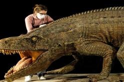 "Llega a Chile exitosa exposición de Dinosaurios, para fanáticos ""de verdad"""