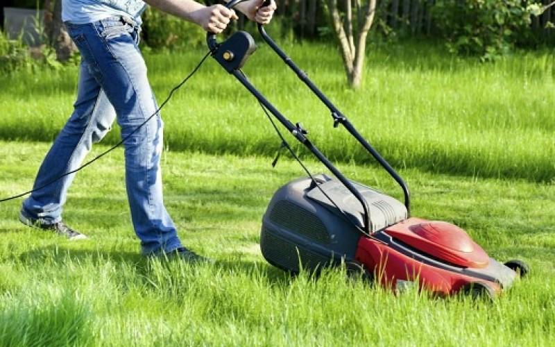 Prepara tu jardín durante los primeros meses del año