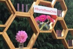 Te presentamos los nuevos Lipsticks de Burt's Bees