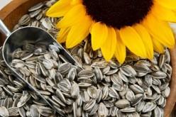 6 alimentos que ayudan al crecimiento del cabello #BlogsAmigos