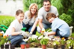 Cinco tips para cuidar tu jardín en otoño