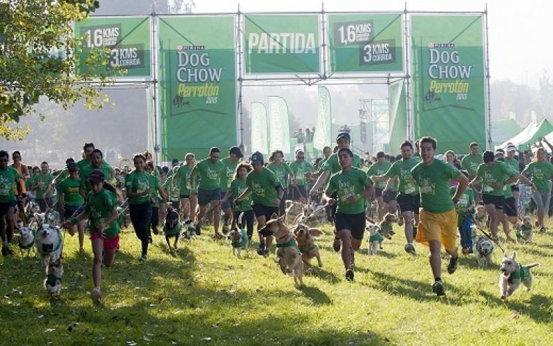Se viene la Quinta versión de Perrotón Dog Chow con actividades para la familia