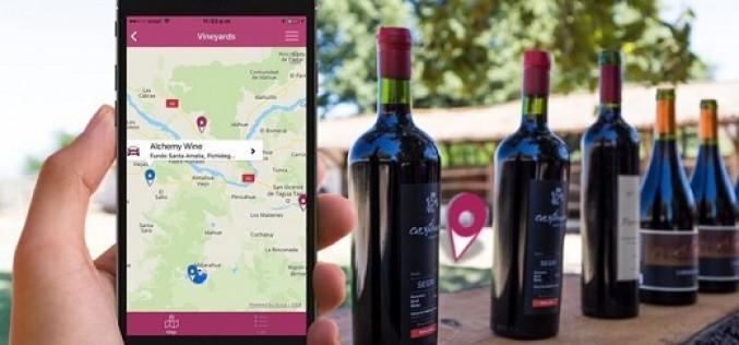 Si eres amante del vino y el enoturismo, esta aplicación es para ti