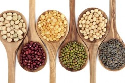 Proteínas aptas para vegetarianos