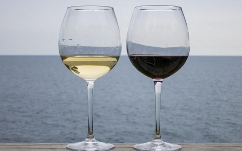 Disfruta el día del vino con esta aplicación