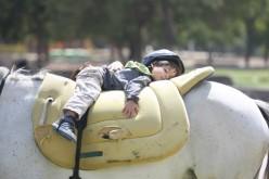 Niños de La Granja podrán hacer Hipoterapia gratis