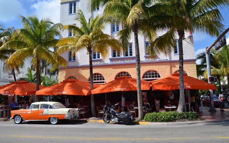 Siempre Miami!