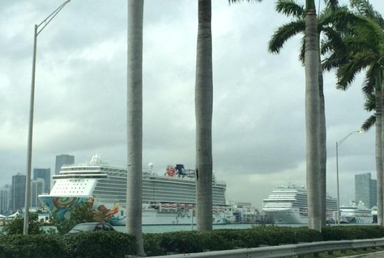 Miami Cruceros