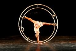 Arte circense llega con La Celebración o el Drama del Paraíso