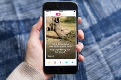 Rinoceronte busca pareja en Tinder