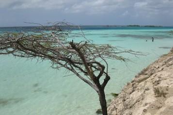 Cinco motivos para visitar Aruba
